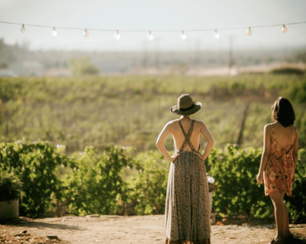 solvang winemaker tour